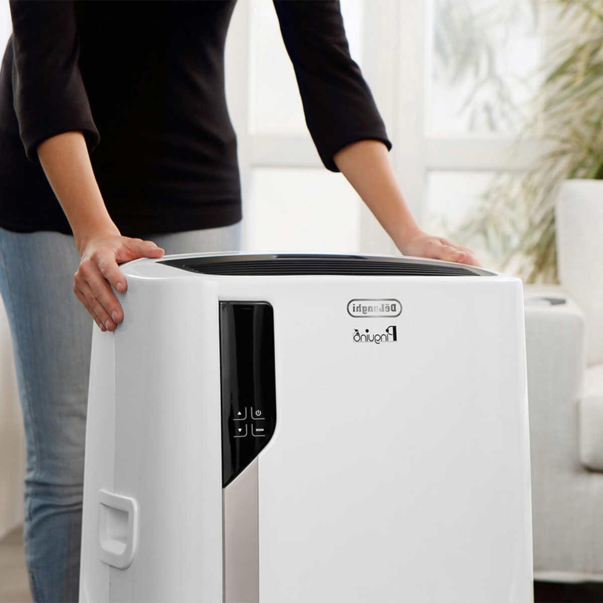 De'Longhi Pinguino 1 Air Conditioner, Heater,