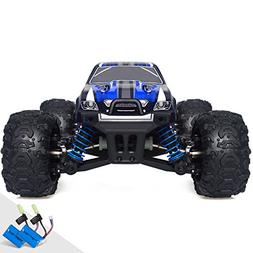 Remote Control Car, Terrain RC Cars, Electric Remote Control